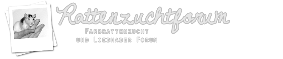 http://rattenzuchtforum.de